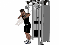 Decline Cable Chest Press