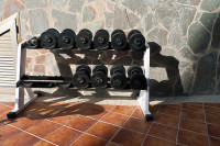 Dumbbell Routine