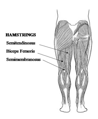 Home Hamstring Workout
