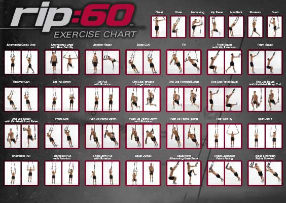 Wall Chart for Suspension Trainer Exercises.
